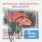 Lutjanus sebae: 5-Franc (1-Ariary) Postage Stamp
