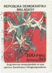 Angraecum sesquipidale and Xanthopan morganii praedicta: 100-Franc (20-Ariary) Postage Stamp
