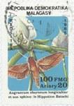 Angraecum eburneum and Hippotion batschi: 100-Franc (20-Ariary) Postage Stamp