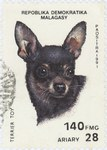English Toy Terrier: 140-Franc (28-Ariary) Postage Stamp