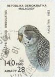 Front: Melopsittacus undulatus: 140-Franc ...