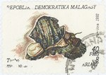 Turbo marmoratus: 40-Franc (8-Ariary) Postage Stamp