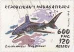Front: Carcharhinus longimanus: 600-Franc ...