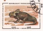 Front: Prehistoric Animals: Protoceratops:...