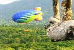 Freeze-Frame: Madagascar: A Treetop Odyssey