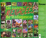 Poster: Vintsy: Bimestriel Malgache d'Orien...
