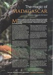 Article First Page: Wildlife Worldwide: Autumn 2014