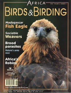 Africa – Birds & Birding: Vol. 3, No. 4