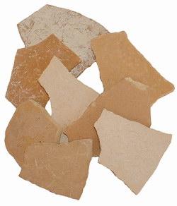 Elephant Bird Shell Fragments: Subfossil Fragments of Aepyornis maximus Eggshell