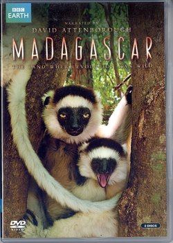 Madagascar: The land where evolution ran wild