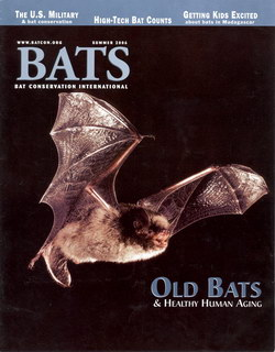 Bats: Summer 2006 (vol. 25, no. 2)