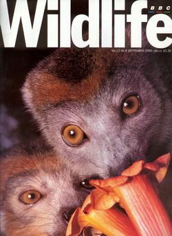 BBC Wildlife: September 1995, Volume 13, Number 9