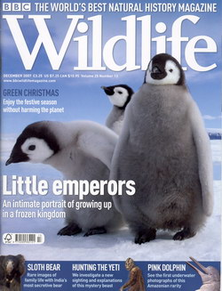 BBC Wildlife: December 2007, Volume 25, Number 13
