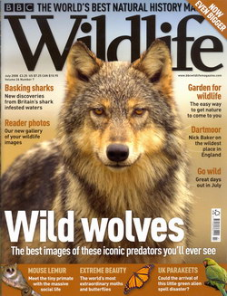 BBC Wildlife: July 2008, Volume 26, Number 7
