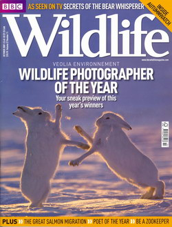 BBC Wildlife: October 2009, Volume 27, Number 11