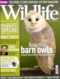 BBC Wildlife: June 2009, Volume 27, Number 6