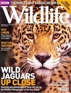 BBC Wildlife: August 2009, Volume 27, Number 9