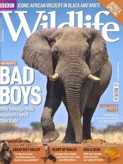 BBC Wildlife: March 2010, Volume 28, Number 3