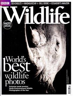 BBC Wildlife: October 2011, Volume 29, Number 11