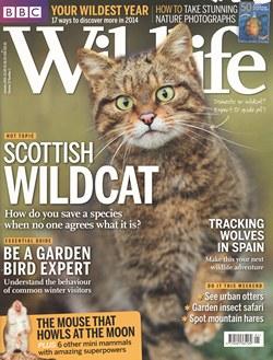 BBC Wildlife: January 2014, Volume 32, Number 1