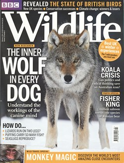 BBC Wildlife: February 2014, Volume 32, Number 2