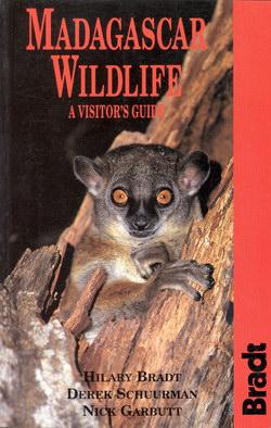 Madagascar Wildlife: A Visitor's Guide