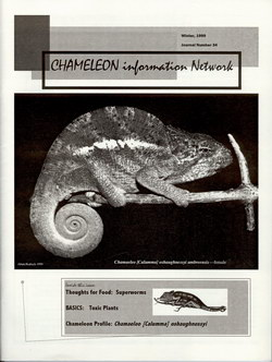Chameleon Information Network Journal: No. 34, Winter 1999