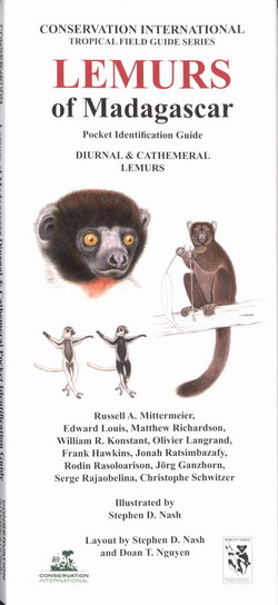 Lemurs of Madagascar: Diurnal & Cathemeral Lemurs: Pocket Identification Guide