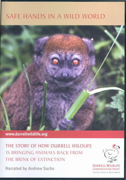 Safe Hands in a Wild World: The story of how Durrell Wildlife is bringing animals back from the brink of extinction