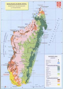 Madagasikara: Sarintany Volinanahary: La Vegetation