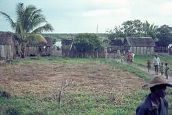 Village near Tamatave