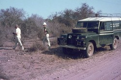 The Edinburgh University Zoological Expedition Land Rover in the spiny forest: Ejeda