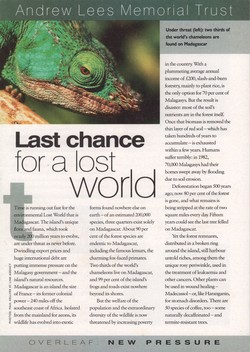 Last Chance for a Lost World: Andrew Lees Memorial Trust