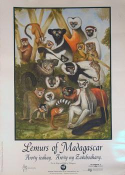 Lemurs of Madagascar: Arovy Izahy. Arovy ny Zavaboahary.