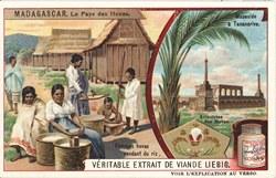 Femmes Hovas vendant du riz / Mausolée à Tananarive / Armoiries des Hovas