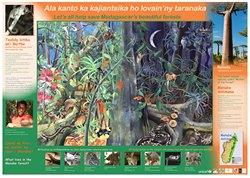Menabe Poster: Ala kanto ka kajiantsika ho lovain'ny taranaka / Let's all help save Madagascar's beautiful forests