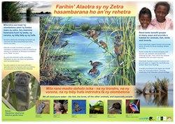 Lac Alaotra / Reed Beds Poster: Farihin' Alaotra sy ny Zetra hasambarana ho an'ny rehatra