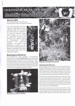 Monthly from Madagascar: Madagascar Fauna Group: March 2005: Volume 2, Issue 3