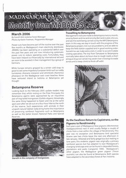 Monthly from Madagascar: Madagascar Fauna Group: March 2006: Volume 3, Issue 3