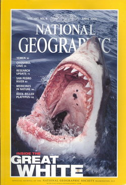 National Geographic Magazine: Vol. 197, No. 4, April 2000