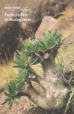 Pachypodien in Madagaskar
