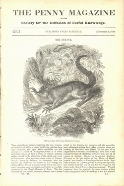 The Penny Magazine: 423: November 3, 1838
