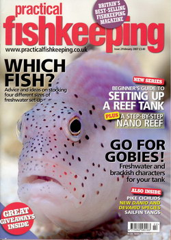 Practical Fishkeeping: Issue 2/February 2007
