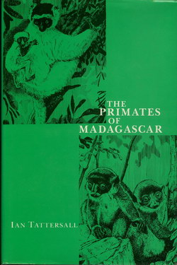 The Primates of Madagascar