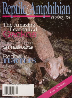 Reptile & Amphibian Hobbyist: November 2002 (Vol. 6, No. 3)