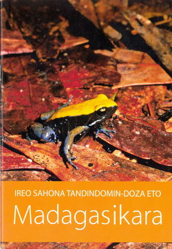 Ireo Sahona Tandindomin-doza Eto Madagasikara