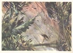 43. Urwaldgewitter auf Madagascar