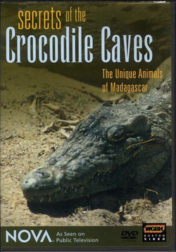 Secrets of the Crocodile Caves: The Unique Animals of Madagascar