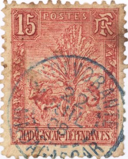 Zebu and Ravenala: 15-Centime Postage Stamp