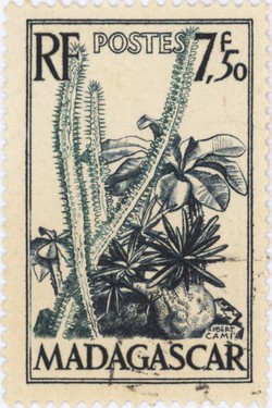 Plants of the Spiny Forest: 7.50-Franc Postage Stamp